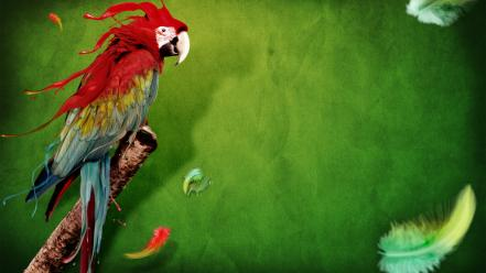 Splash Of Parrot Wallpaper