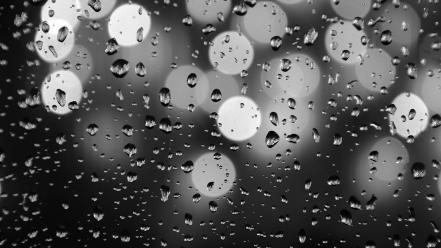Water black and white bokeh waterdrops wallpaper