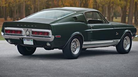 Muscle cars vehicles wallpaper