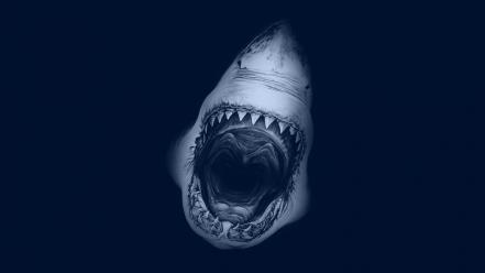 Blue sharks jaws Wallpaper