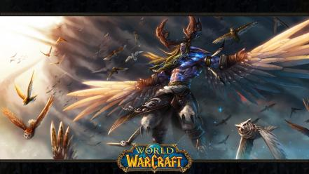 Owls druid blizzard entertainment malfurion stormrage game wallpaper