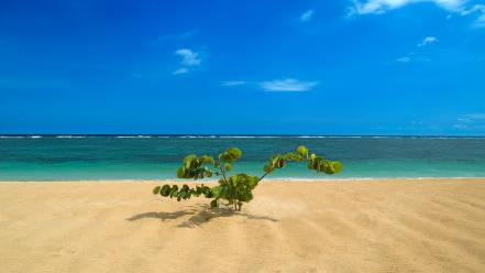 Bali beaches blue skies landscapes nature wallpaper
