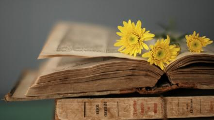 Flowers books style wallpaper