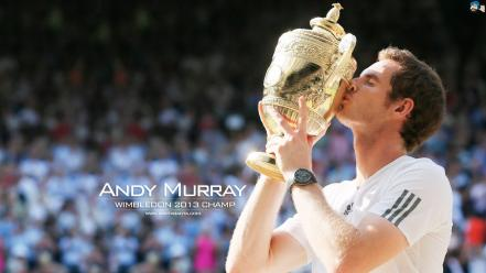 Andy murray wimbledon tennis wallpaper