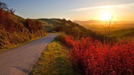 Landscapes nature sun roads wallpaper