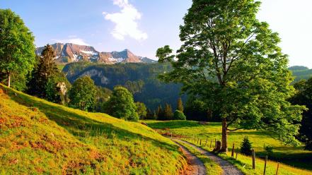 Mountains landscapes nature trees europe switzerland alps pathway wallpaper