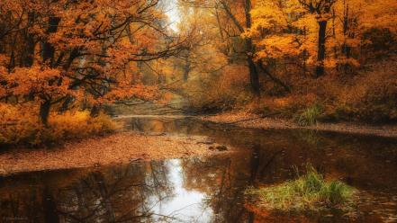 Water landscapes nature autumn forests rivers season Wallpaper