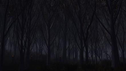 Eyes trees autumn dark night wood forest wallpaper