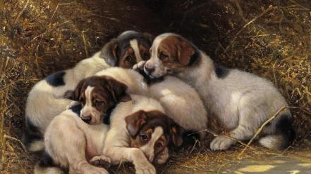 Paintings animals dogs wallpaper