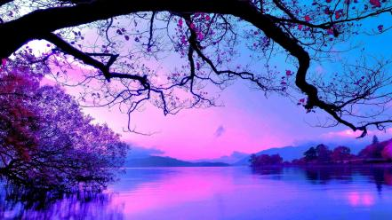 Water landscapes nature trees colors wallpaper