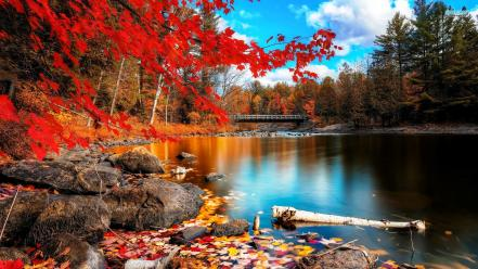 Landscapes nature autumn lakes Wallpaper
