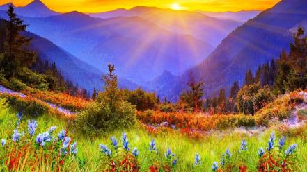 Mountains landscapes nature sun trees flowers grass scenic wallpaper