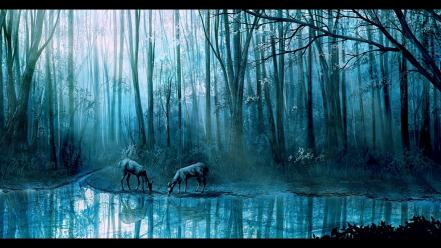 Ponds deer plants streams scenic reflections forest Wallpaper