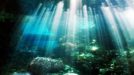 Underwater Rocks Stock Photos  Royalty Free Images