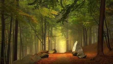 Landscapes trees paths rocks wallpaper