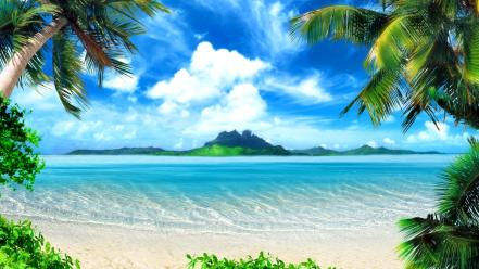 Seascape beaches landscapes nature palm trees wallpaper