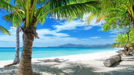 Beaches landscapes natural scenery nature palm trees Wallpaper