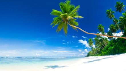 Beautiful tropical beach wallpaper