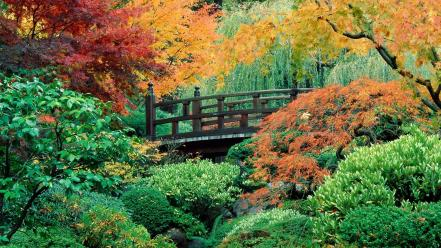 Flowers garden japanese oregon portland washington wallpaper