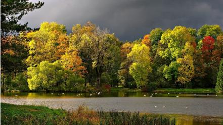 Dark clouds forests lakes landscapes nature wallpaper