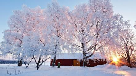 House landscapes nature snowy trees sunlight wallpaper