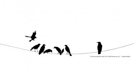 Black and white crows minimalistic power lines quotes wallpaper