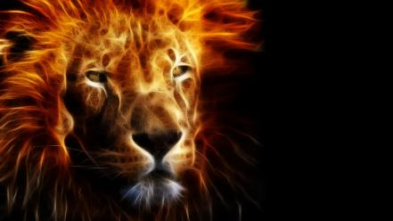 Fractalius animals black background fire lions wallpaper