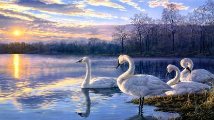 Artwork paintings sunset swans Wallpaper