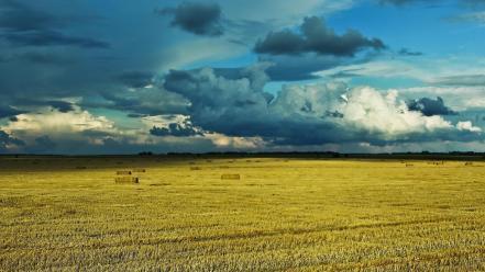 природа картинки украины