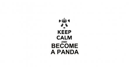 Keep calm and panda bears simple background text wallpaper