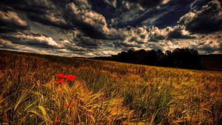 Clouds landscapes fields skies wallpaper