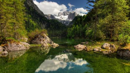 Austria forests grass green lakes Wallpaper