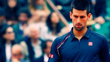 Novak djokovic tennis players Wallpaper