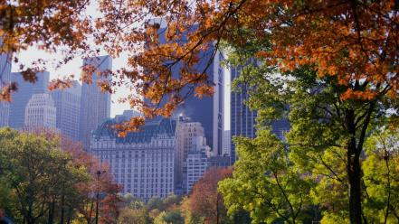 Central park new york city autumn wallpaper