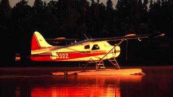 Beaver Floatplane wallpaper