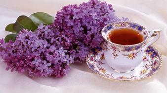 Lilac And Tea wallpaper