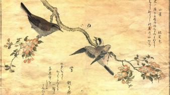 Birds japanese artwork warblers great tit kitagawa utamaro wallpaper