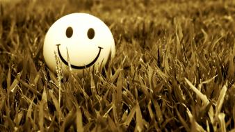 Grass smiling wallpaper