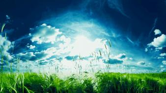 Green clouds nature sun Wallpaper