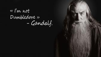 Harry potter trolling ian mckellen magician dumbledore wallpaper