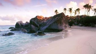 Landscapes beach rocks palm trees sea wallpaper