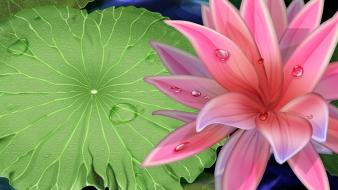 Paintings multicolor plants water lilies wallpaper
