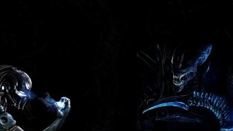 Alien predator science fiction wallpaper