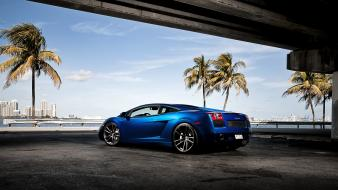 Lamborghini gallardo blue cars palm trees wallpaper