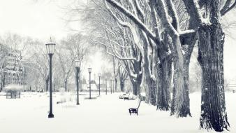 Nature parks snow white winter wallpaper