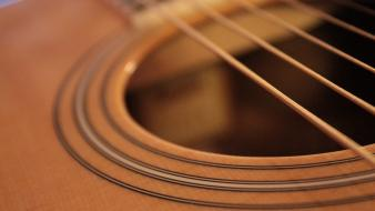 Taylor guitars acoustic closeup music wallpaper