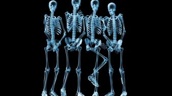 Xray funny skeletons wallpaper