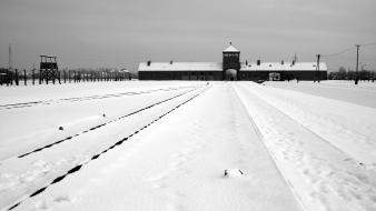 Auschwitz world war ii concentration camp prison snow wallpaper