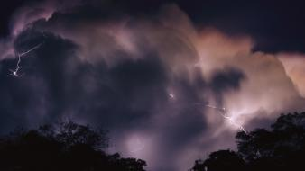 Brazil lightning rainforest storm wallpaper