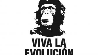 Che guevara evolution funny revolution wallpaper